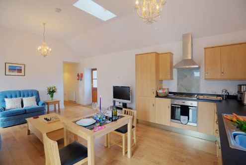 One bedroom Kitchen, lounge and dining area